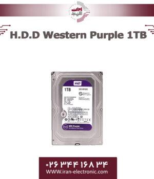 هارددیسک وسترن بنفش یک ترا بایت H.D.D Western Purple 1TB